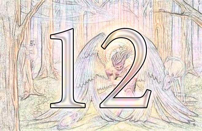 значение числа 12